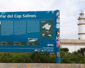 Cap de Ses Salines Mallorca