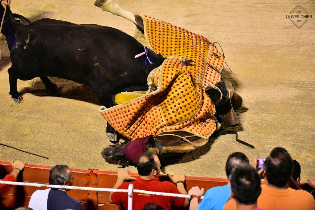 Stierkampf Juli 2016 Palma de Mallorca Stier gegen Pferd