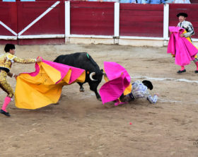 Stierkampf Muro Mallorca Juni 16