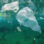 Plastikvermeidung an der Playa